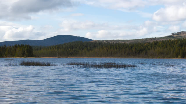 stroan loch in dumfries and galloway, south west scotland - johnfscott stock videos & royalty-free footage