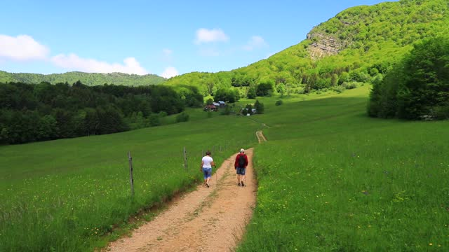 strollers walk through an alpine meadow in the chartreuse mountains on june 10, 2021 in entremont-le-vieux, france. chartreuse regional nature park... - flower head stock videos & royalty-free footage