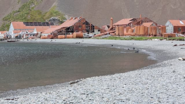 stromness whaling station on south georgia it was operational until 1961 and wa the place where sir ernest shackleton finally reached after his epic... - 1961 stock videos & royalty-free footage