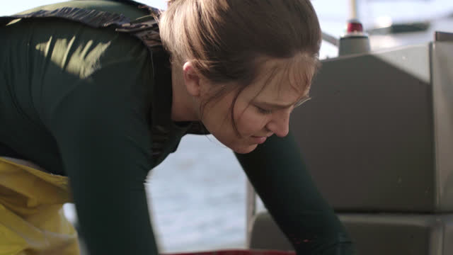 cu. strong fisherwoman prepares her boat by gathering gloves, tools, baskets, and supplies before going out to harvest oysters and mussels. - ミヤコドリ点の映像素材/bロール