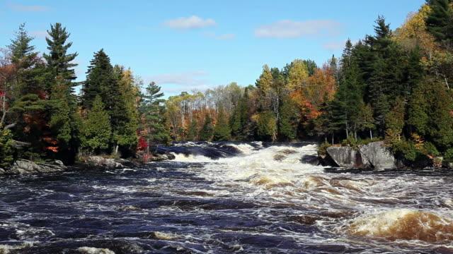 強力なリバー電流を秋シーズン