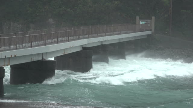 strong wind and dangerous currents hits coast of japan as typhoon hagibis makes landfall - raining cats and dogs stock videos & royalty-free footage