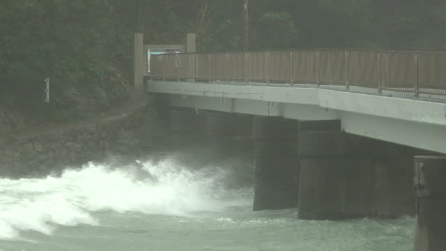 strong wind and dangerous tidal currents hit japan as typhoon hagibis makes landfall - torrential rain stock videos & royalty-free footage