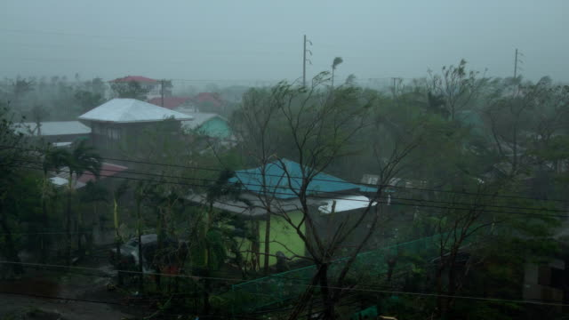 strong wind and rain from super typhoon mangkhut sweeps across a town in the philippines - isola di luzon video stock e b–roll