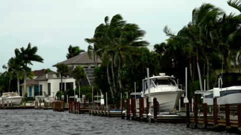 strong wind blows over marina the day before hurricane irma hits naples, florida - bay of water stock videos & royalty-free footage