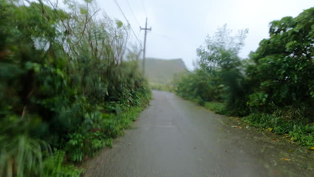 strong wind hits the island of ishigaki in japan as typhoon infa makes landfall - dirt track stock videos & royalty-free footage