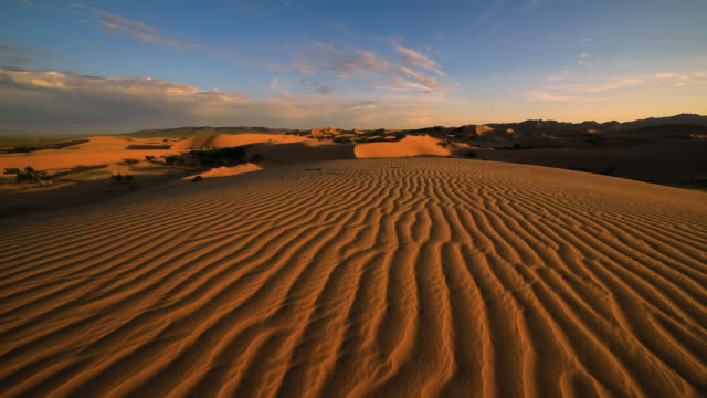 strong wind in the desert. sand blows from the dunes. sahara desert - steppe stock videos & royalty-free footage