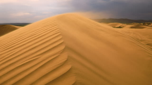 strong wind in the desert. sand blows from the dunes. sahara desert - anhöhe stock-videos und b-roll-filmmaterial