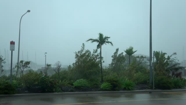 vídeos de stock e filmes b-roll de strong winds and torrential rain lash northern queensland as cyclone debbie makes landfall - fenómeno natural
