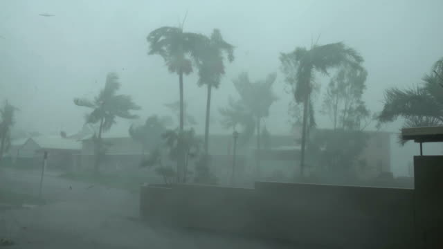 strong winds and torrential rain lash northern queensland as cyclone debbie makes landfall - extreme weather stock videos & royalty-free footage