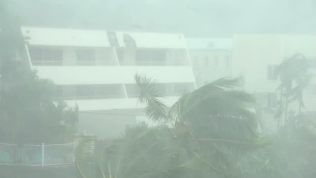 strong winds and torrential rain lash northern queensland as cyclone debbie makes landfall - weather stock videos & royalty-free footage