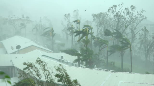 strong winds and torrential rain lash northern queensland as cyclone debbie makes landfall - vortex stock videos & royalty-free footage