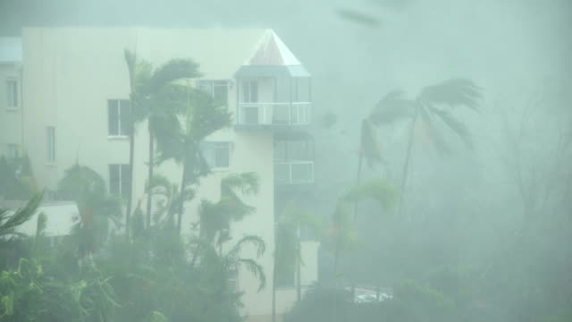 strong winds and torrential rain lash northern queensland as cyclone debbie makes landfall - cyclone stock videos and b-roll footage