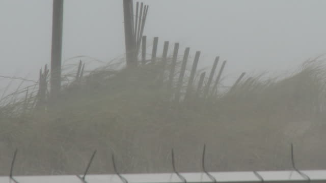 strong winds blow rain and sand across the dunes on rockaway beach during tropical storm isaias rockaway queens new york new york - scott mcpartland stock videos & royalty-free footage