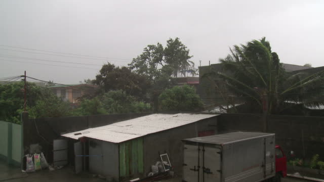 strong winds blow through trees and building during super typhoon megi or juan, ne luzon, philippines oct 2010 / audio - record breaking stock videos & royalty-free footage