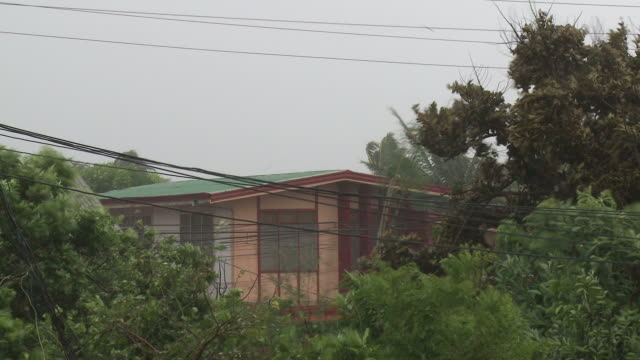 strong winds from typhoon megi or juan lash trees and house, ne luzon, philippines oct 2010 / audio - luzon stock videos & royalty-free footage