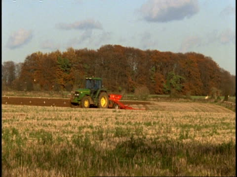 Stroud, Gloucestershire - tractors plough stubble field in opposite directions, birds feed, trees on horizon