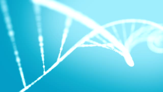dna structure formation - dna video stock e b–roll