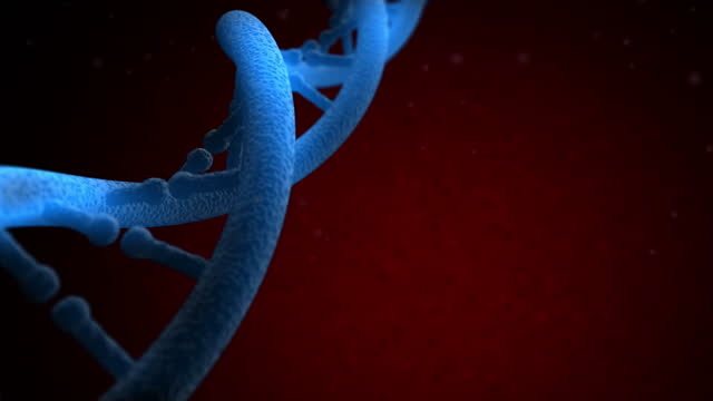 4k dna structure - loopable - chromosome stock videos & royalty-free footage