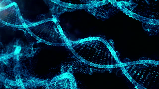 dna structure - dna stock videos & royalty-free footage