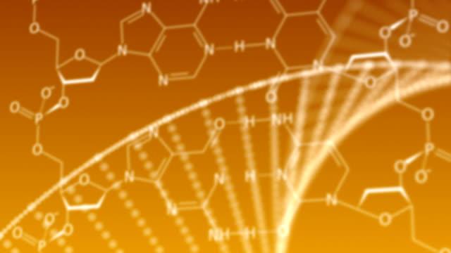 vidéos et rushes de structure adn  - formule chimique