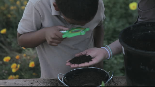 stockvideo's en b-roll-footage met td student and teacher examining soil with magnifying glass / los angeles, california, united states - breedbeeldformaat