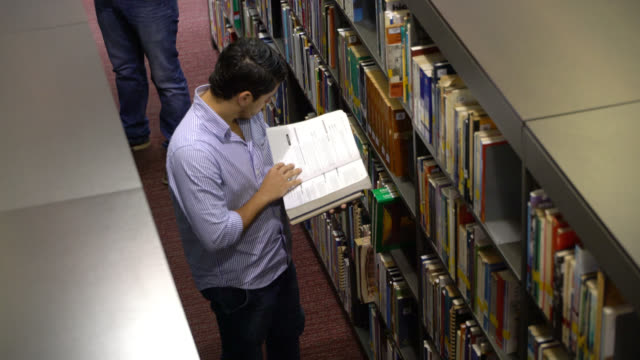 student looking at a book in the library very focused - library stock videos & royalty-free footage
