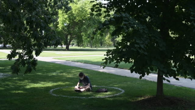 student reading in designated spot in park. scenes of the the ohio state university campus on the first day of fall semester in columbus, ohio, u.s.,... - circle stock videos & royalty-free footage