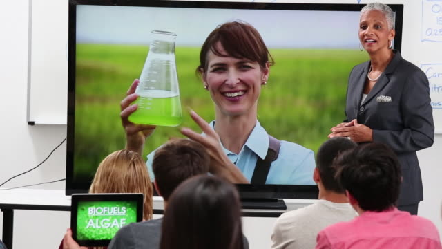 ws tu students and professor video conferencing with scientist in tidal marsh / richmond, virginia, united states - projection screen stock videos & royalty-free footage