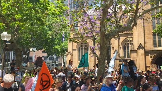 students and protestors at sydney town hall on november 29 2019 in sydney australia rallies held across australia are part of a global mass day of... - government building stock videos & royalty-free footage