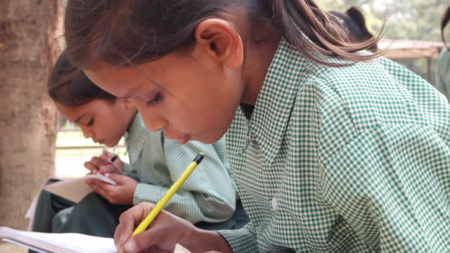 Students busy working and studying
