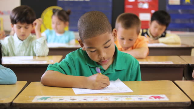 ms pan students doing schoolwork in class / richmond, virginia, united states    - preschool stock videos and b-roll footage