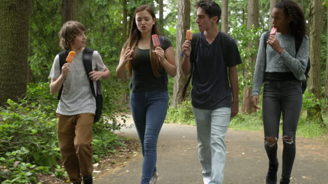 students eating ice pops in a forest - 12 13 jahre stock-videos und b-roll-filmmaterial