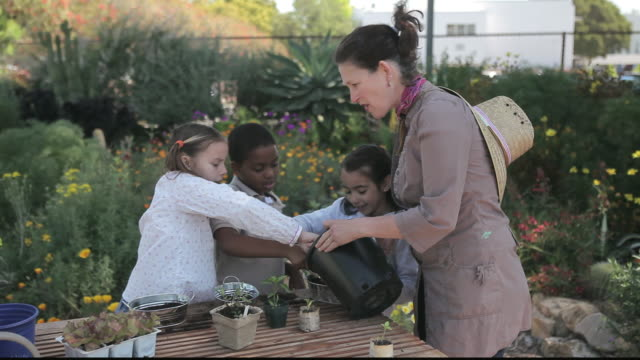 ms students gardening with teacher / los angeles, california, united states - gärtnern stock-videos und b-roll-filmmaterial