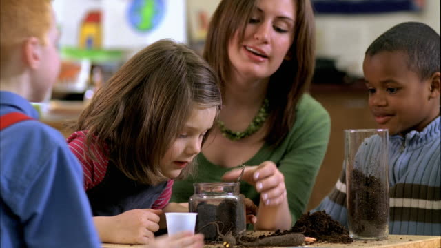 ms students (5-6) inspecting bulb planted in pot, oshkosh, wisconsin, usa - seedling stock videos & royalty-free footage