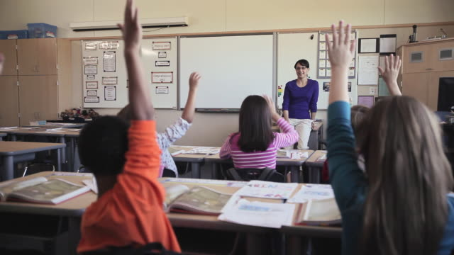 stockvideo's en b-roll-footage met ms students (8-11) listening to teacher raising hands to ask questions in elementary school classroom / university place, washington, usa - 10 11 jaar