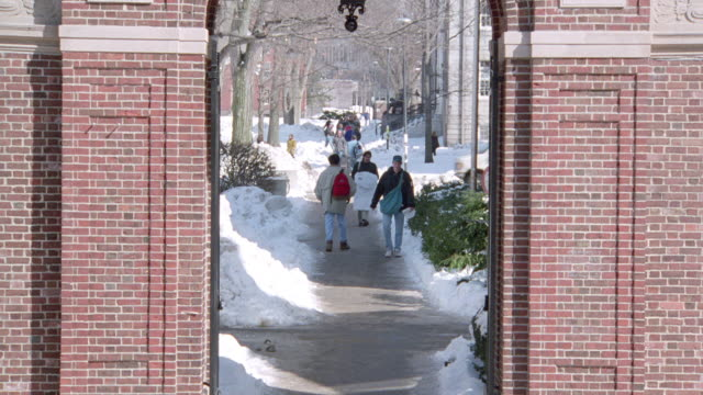 students pass through the harvard university archway as they walk to class. - ivy league university stock videos & royalty-free footage