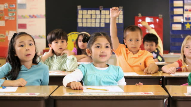 ms pan students raising hands in class / richmond, virginia, united states    - classroom stock videos & royalty-free footage
