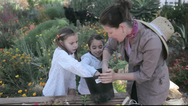 vídeos de stock e filmes b-roll de ms students smelling soil in garden with teacher / los angeles, california, united states - professora