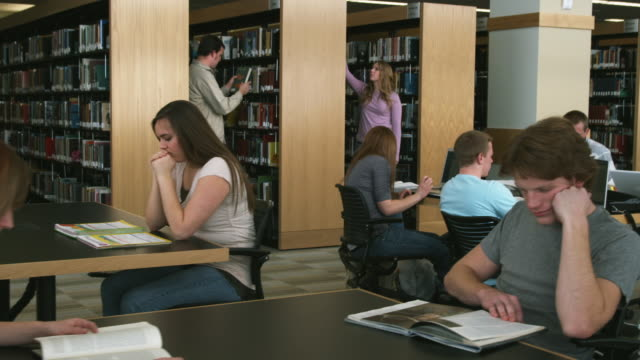 MS DS Students studying at library, Orem, Utah, USA