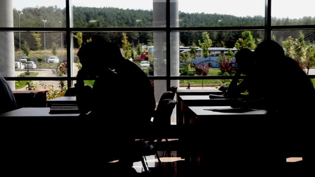 Students Studying at the Library