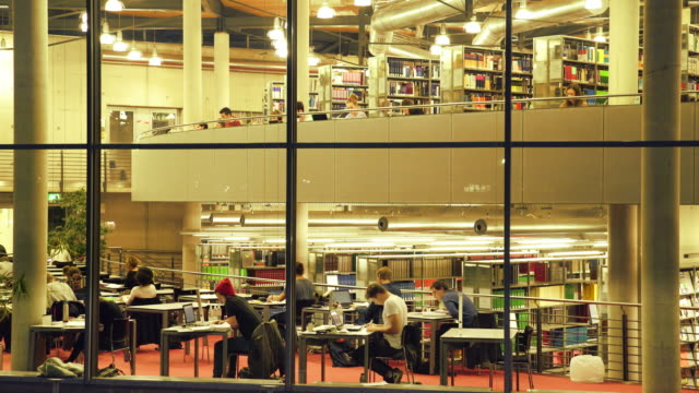 students studying in the library at night - person in further education stock videos and b-roll footage