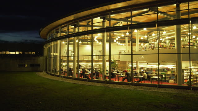 students studying in the library at night - istruzione post secondaria video stock e b–roll