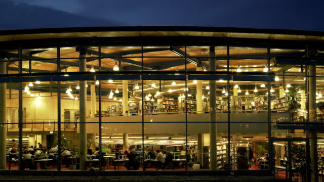 students studying in the library at night - bibliothek stock-videos und b-roll-filmmaterial