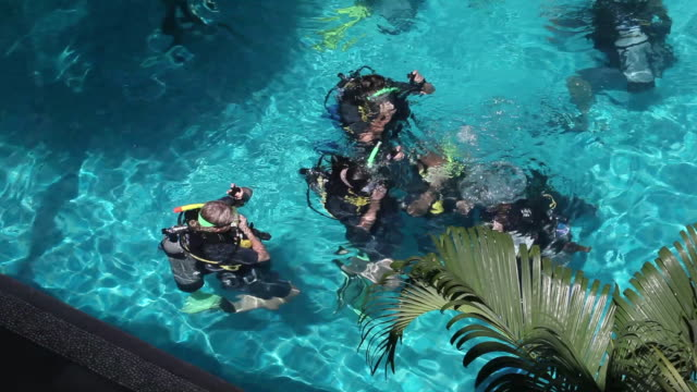 ls students take their first pool dive on a scuba diving course / koh tao, thailand - tauchgerät stock-videos und b-roll-filmmaterial