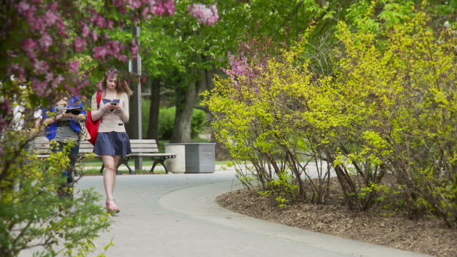 Students walk and talk on university campus