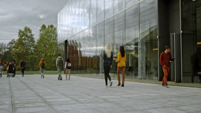 ds students walking out of the university building - studente universitario video stock e b–roll