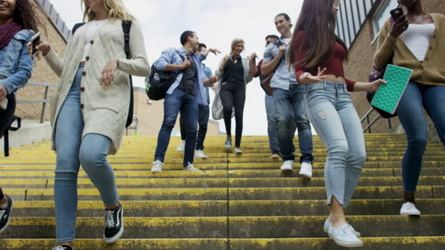 students walking together - studente universitario video stock e b–roll