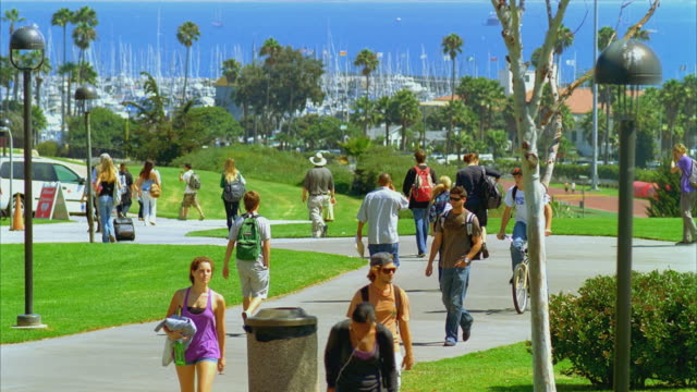 WS Students wandering paths in green grass area, palm trees and ocean in background, Santa Barbara City College campus / California, USA