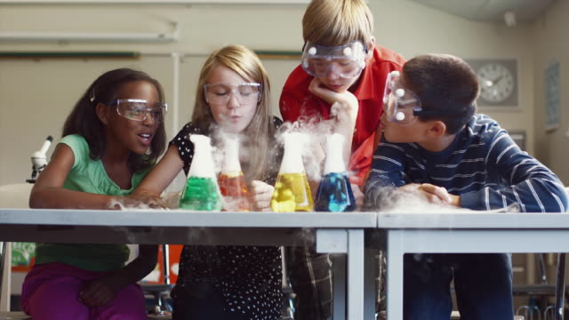 ms students (8-13) working on science project in classroom / edmonds, washington, usa - see other clips from this shoot 1750 stock videos and b-roll footage